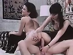 Vintage Danish Sex Party